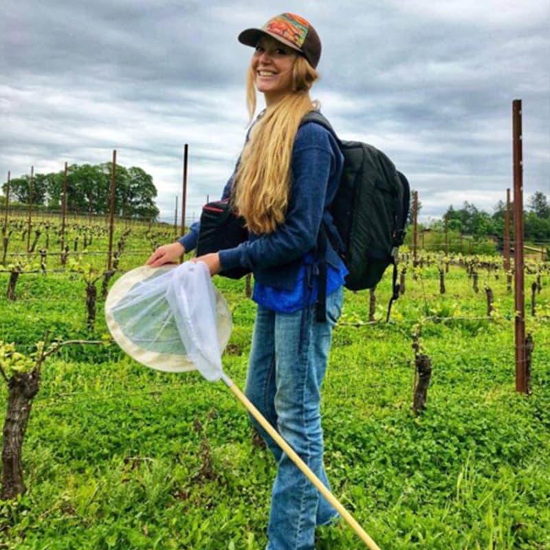 https://www.savethebee.org/wp-content/uploads/2021/08/bee-girl-wine.jpg