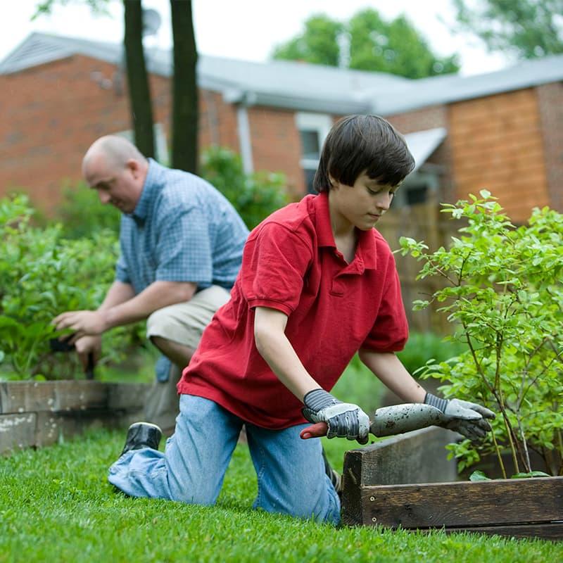 https://www.savethebee.org/wp-content/uploads/2021/08/gardening.jpg